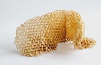 Inside the Beehive: Art of Garen Bedrossian post image
